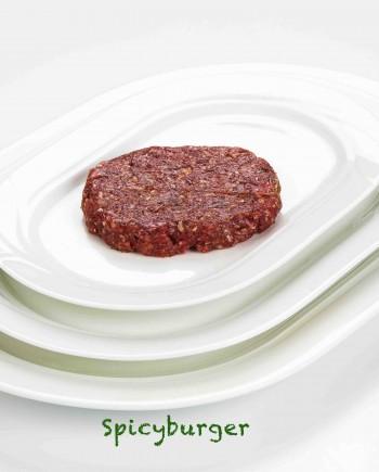 Slagerijvandepasch-BBQ-spicyburger.5